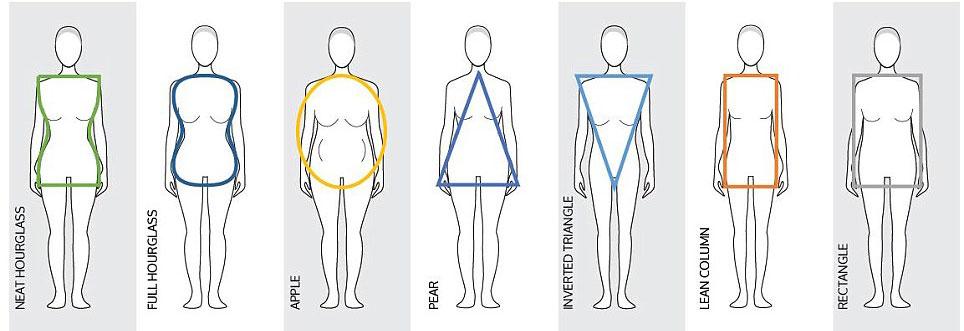 انواع فرم بدن